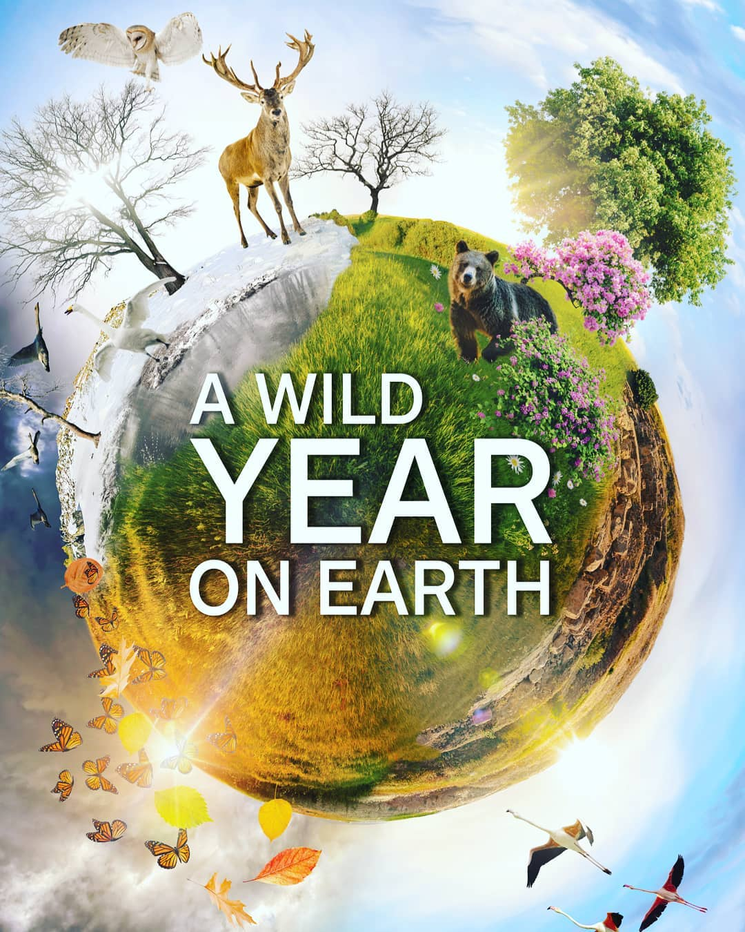 A Wild Year on Earth – Season 1
