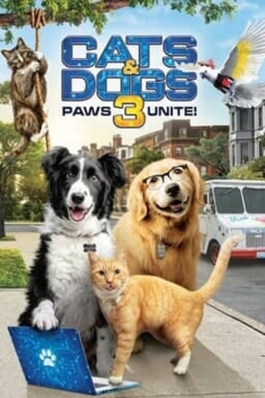 Cats dogs 3 paws unite