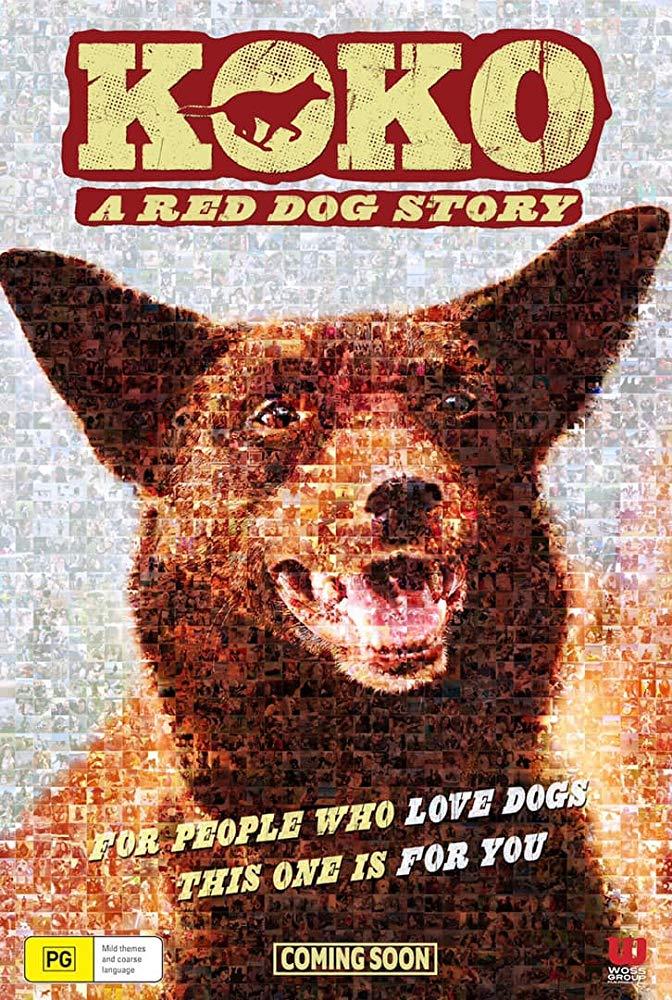 Koko a red dog story